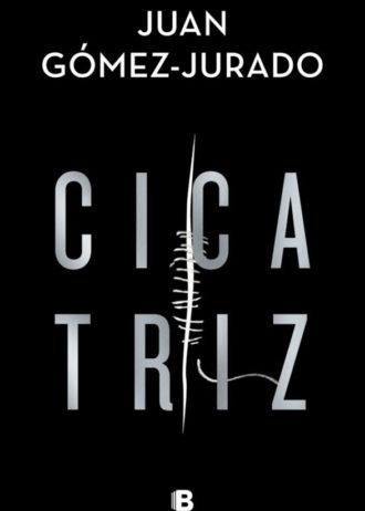 Cicatriz_Juan_Gomez_Jurado_big
